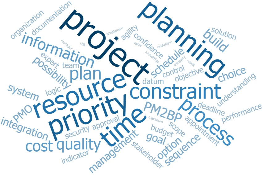 PM2BP word cloud